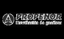 propenor-diesel