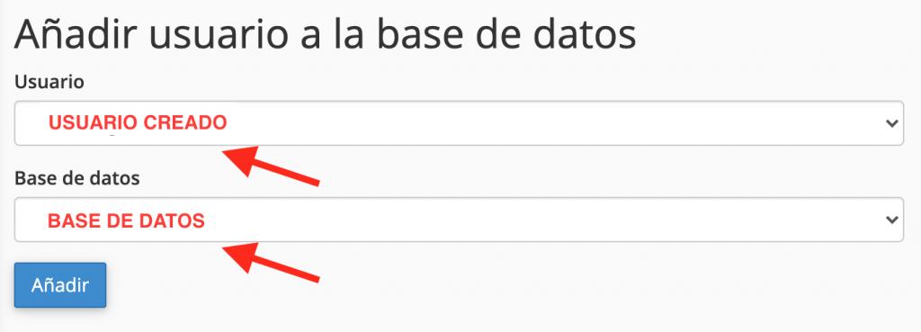 Añadir un usuario a una base de datos en WordPress
